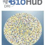 DRI BioHub